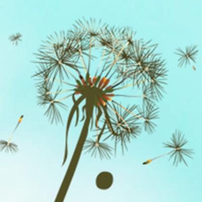 Dandelion Design logo